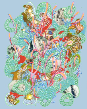 collage organism 2 small