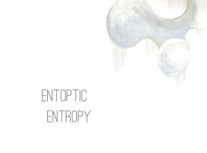 entoptic entropy cover promo